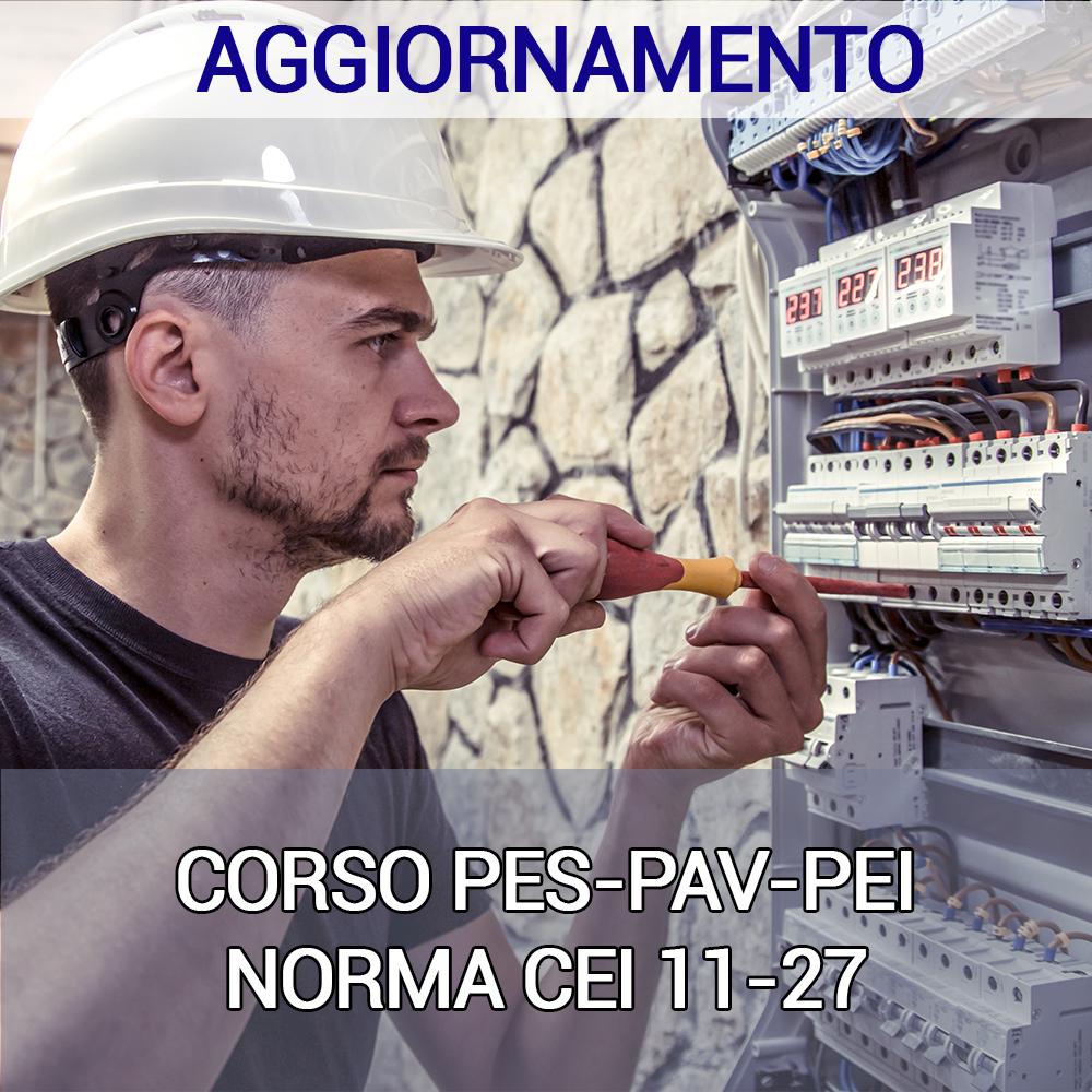 agg PES-PAV-PEI ONLINE